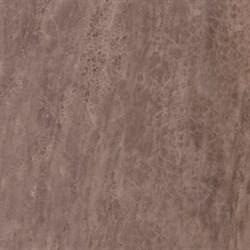4590 Лакшми коричневый 50,2х50,2 - фото 4119