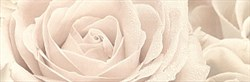 12056/3F Декор Роза 25х75 - фото 4235