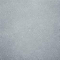SG602900R Дайсен светло-серый обрезной 60х60 - фото 4413