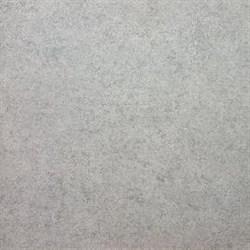 SG601900R Фудзи светло-серый обрезной 60х60 - фото 4648