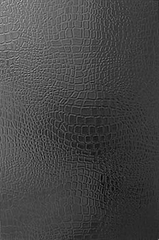 8020 Варан черный 20х30 - фото 4828