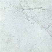 SG450100N Сенегал серый 50,2х50,2
