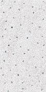 SG594102R Палладиана светлый декорированный 119,5х238,5