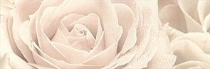 12056/3F Декор Роза 25х75