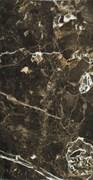 Imperium Brown 31x60